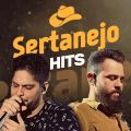 Sertanejo Hits